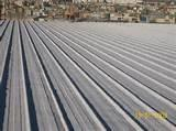 Photos of Purple Spray Foam Insulation